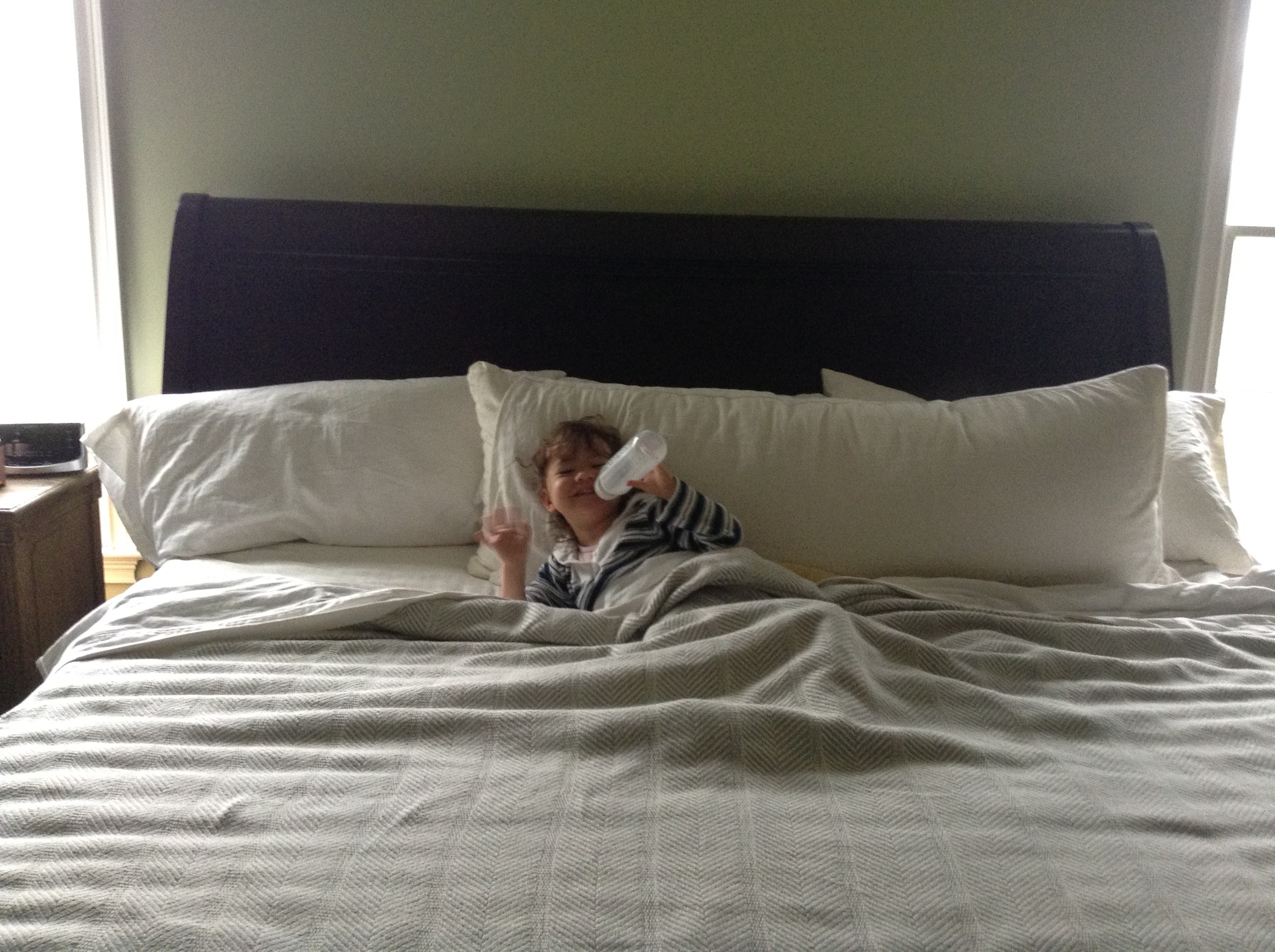 Non-toxic and Eco Friendly Pregnancy/ Pillows | Eco Mama Lists on nursery pillows, cheap pillows, flame retardant pillows, fire retardant pillows, family pillows, furniture pillows, future pillows, food pillows, hypoallergenic pillows, soft pillows, cool pillows,